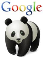la importancia del contenido en el SEO tras Google Panda